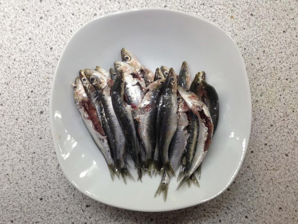 Sardinen (vh)