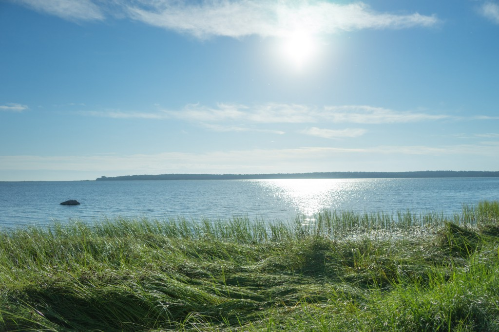 Öland am Morgen (pp)