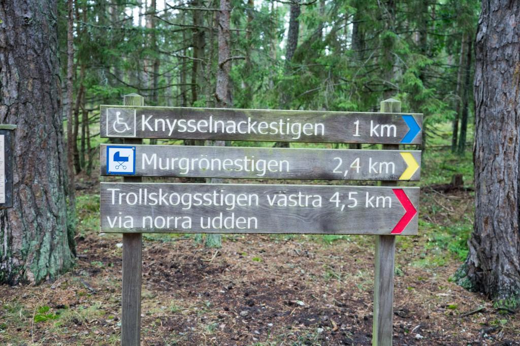 Wandern im Trollwald (vh)