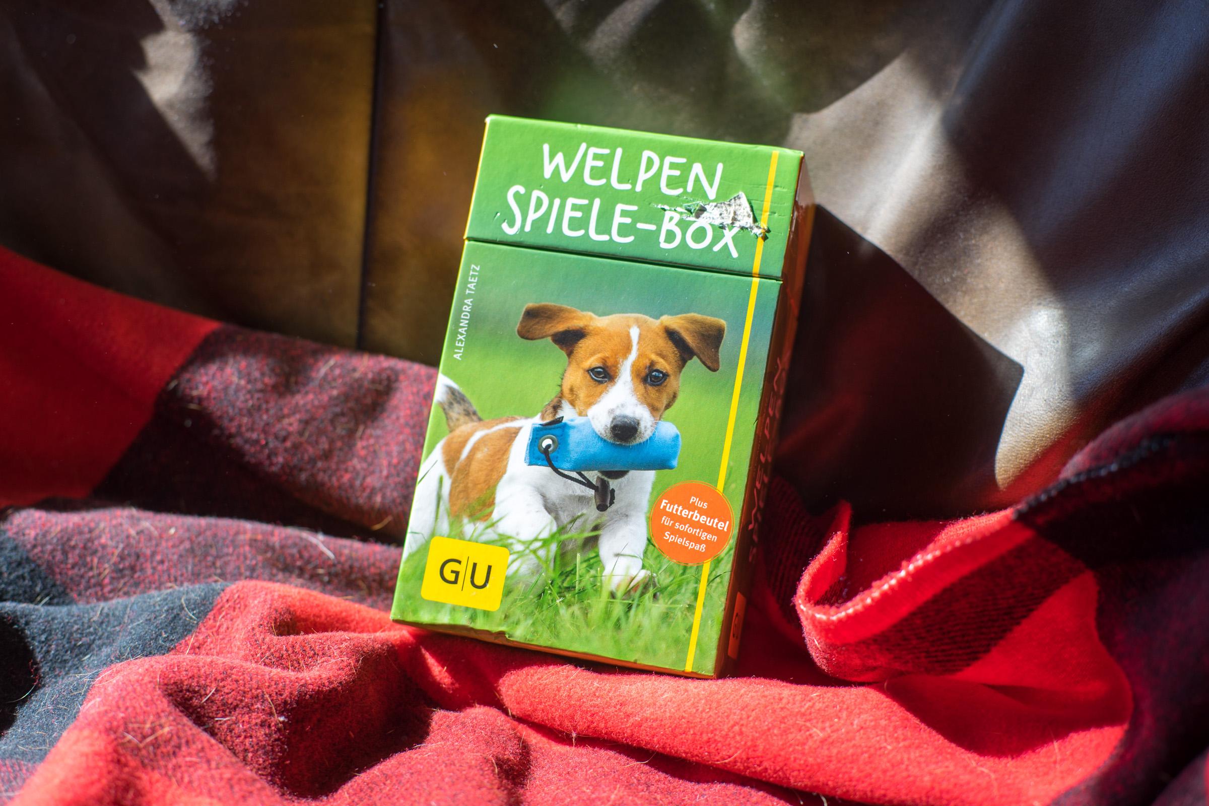 Spiele-Box (nicht nur für Welpen!) (pp)
