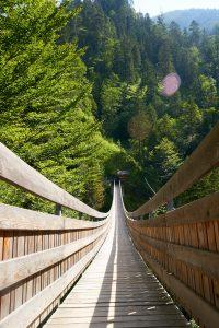 Diese Hängebrücke führt zum Eingang der Klamm in Palfau.