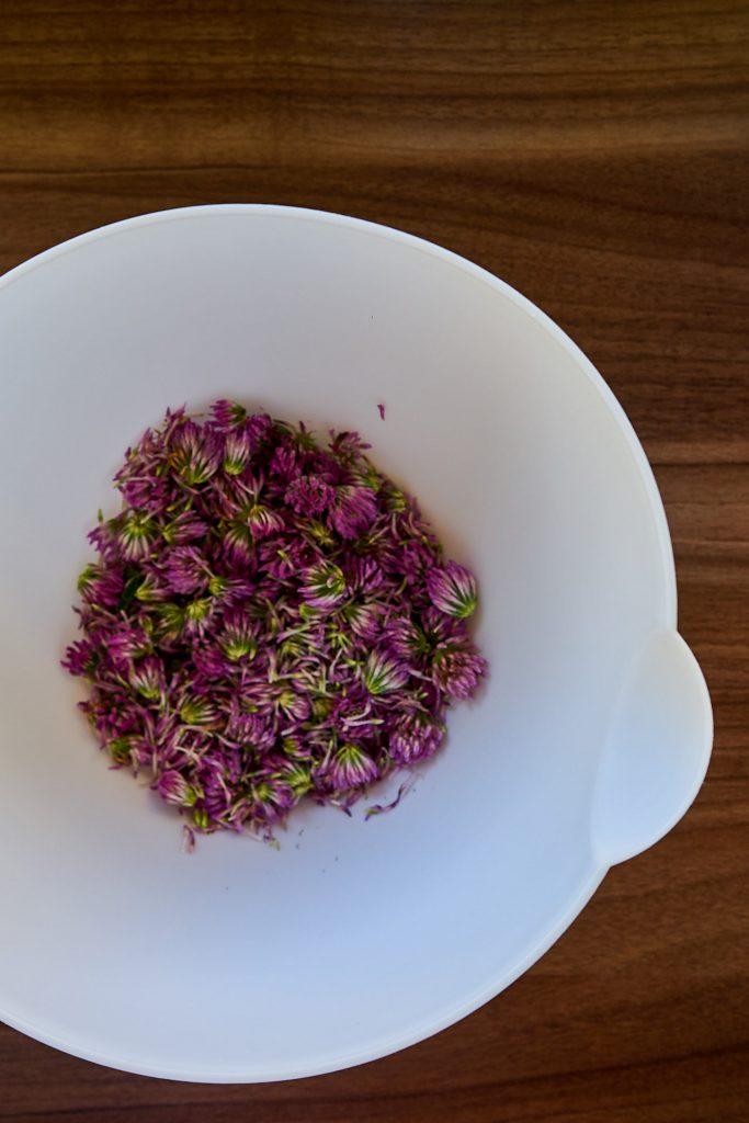 Rotklee-Blüten in einer Schüssel