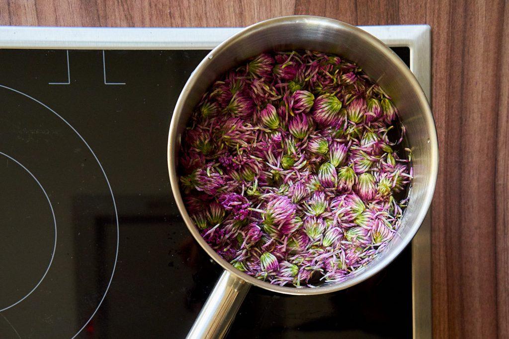 Rotklee-Blüten in einem Kochtopf