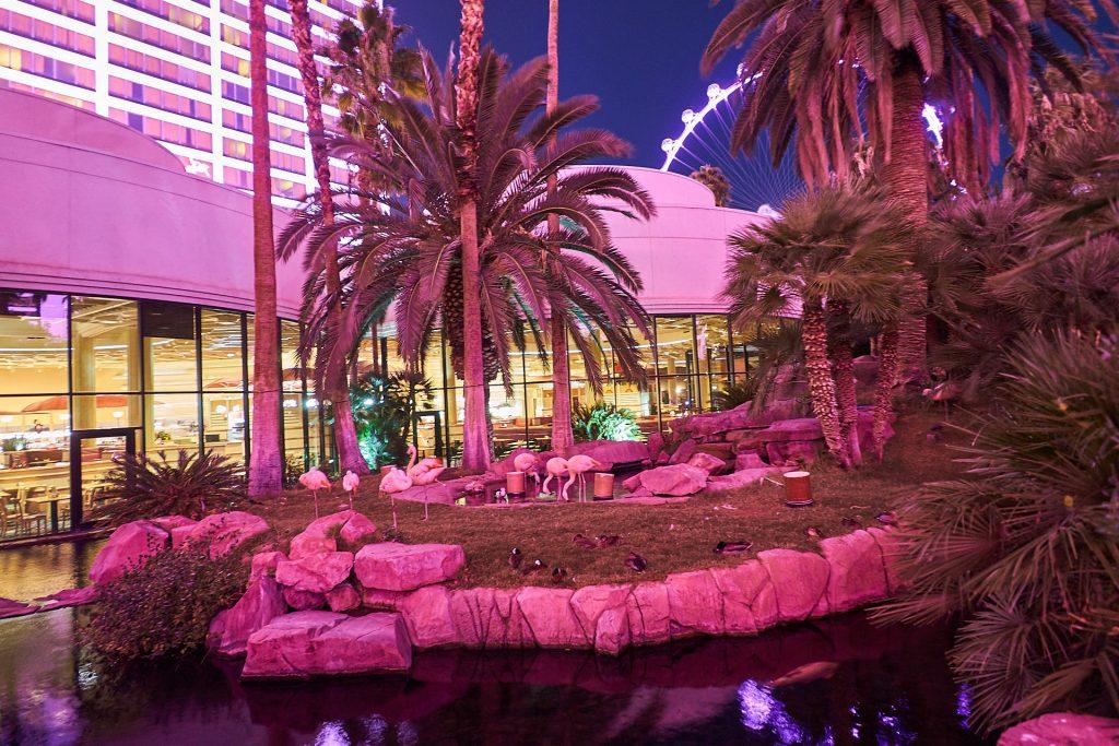 """Flamingo-""""Park"""" beim Hotel Flamingo."""