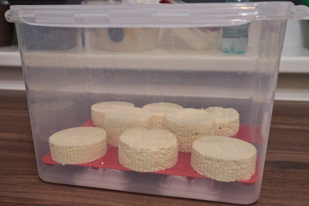 Die Reifebox mit den Käselaibchen.